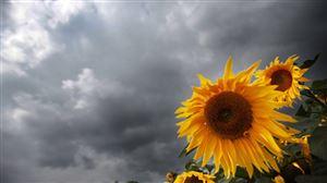Prévisions météo: à quoi s'attendre pour cette semaine?