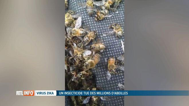 Des millions d'abeilles tuées par l'insecticide anti-Zika — Etats-Unis