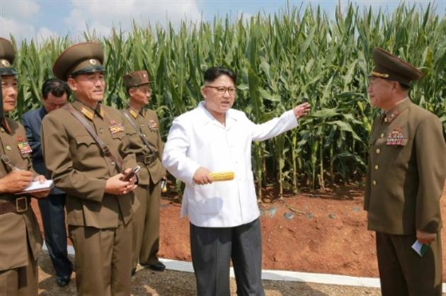 Les Etats-Unis détectent un tir raté de missile nord-coréen