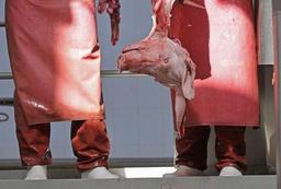 Un scandale sanitaire frappe la viande brésilienne, l'Afsca rassure