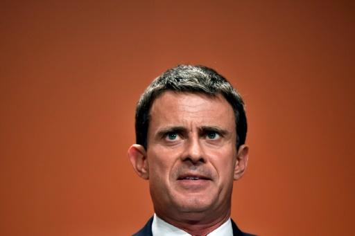 Le chanteur Francis Lalanne candidat suppléant aux législatives contre Manuel Valls