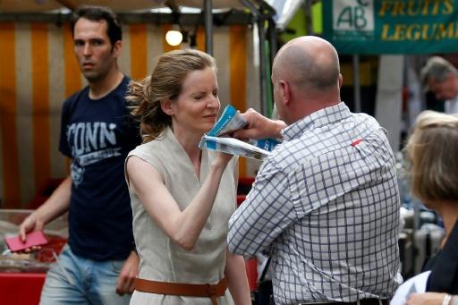 Nathalie Kosciusko-Morizet souffre d'un traumatisme crânien — Législatives