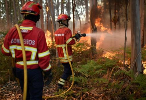Au moins 57 morts dans un gigantesque incendie de forêt — Portugal