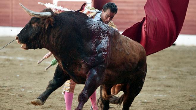 Une corrida tourne mal en France: un taureau encorne mortellement un matador