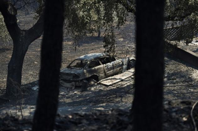 L'incendie de forêt au Portugal a fait au moins 57 morts