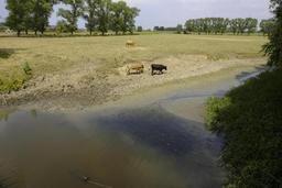 Météo - Un dimanche doux et au sec pour la plupart des Belges