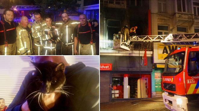 Les pompiers de Charleroi combattent un incendie en plein centre-ville et sauvent un chat, Clochette