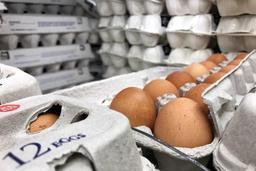 Oeufs contaminés par un insecticide - Neuf lots d'œufs sur dix ne font plus l'objet d'un rappel, après enquête