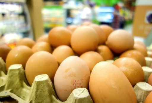 Aucune trace dans les œufs produits en France — Fipronil