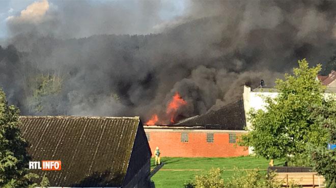 Gigantesque incendie à Beersel : le plan catastrophe déclenché